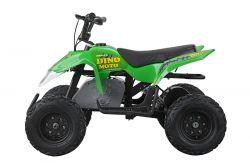 DINOMOTO ATV MINIQUAD E1 - ZELENÁ | cena_Prodejní REBEL MASTER