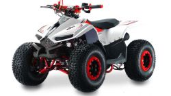 LEM QUAD GRIZZLY 110CC MODRÁ